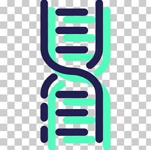 DNA Molecular Structure Of Nucleic Acids: A Structure For Deoxyribose Nucleic Acid Science Technology Medical Biology PNG