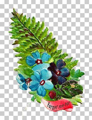 Flower Bouquet Grape Cut Flowers PNG