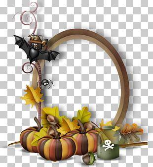 Pumpkin Calabaza Halloween PNG