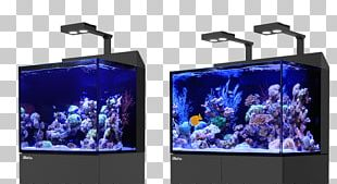 Red Sea Reef Aquarium S.E.A. Aquarium PNG