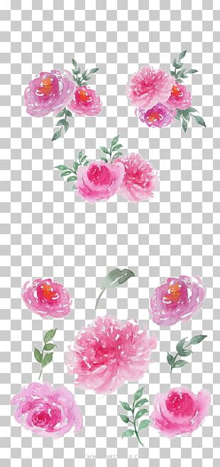 Garden Roses Watercolour Flowers Watercolor Painting PNG