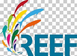 Reef Distribution GmbH Fulldome Database Planetarium PNG