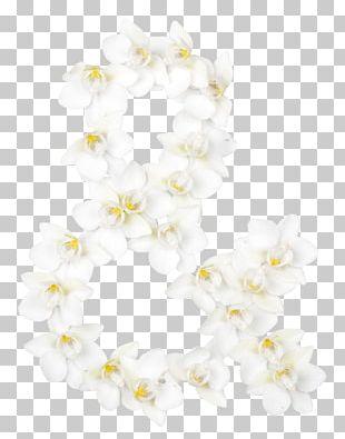 ST.AU.150 MIN.V.UNC.NR AD Moth Orchids Floral Design Estonia Flower PNG