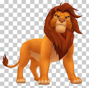 Simba Zazu Lion Mufasa Zira PNG