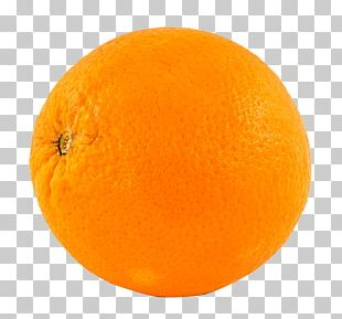 Orange Stock.xchng Portable Network Graphics Fruit PNG