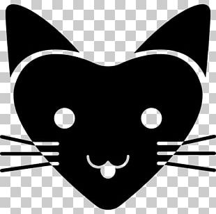 Whiskers Cat Face Shape PNG