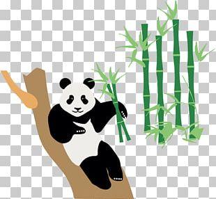 China Japan Icon PNG