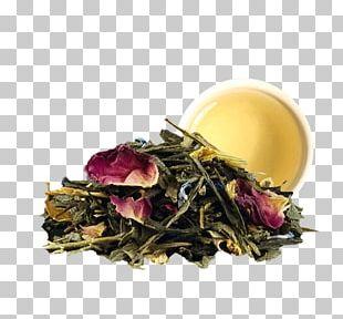 Sencha Green Tea Masala Chai Tea Bag PNG