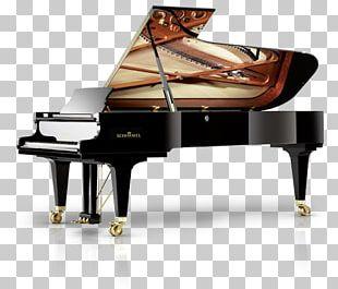Wilhelm Schimmel Braunschweig Grand Piano Steinway & Sons PNG