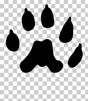 Paw Long-tailed Weasel Dog Cat Animal Track PNG