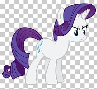 Rarity Fluttershy Rainbow Dash Pony Fan Art PNG