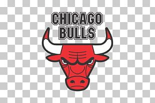 United Center Chicago Bulls NBA Washington Wizards Phoenix Suns PNG