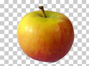 Juice Apple Fruit PNG