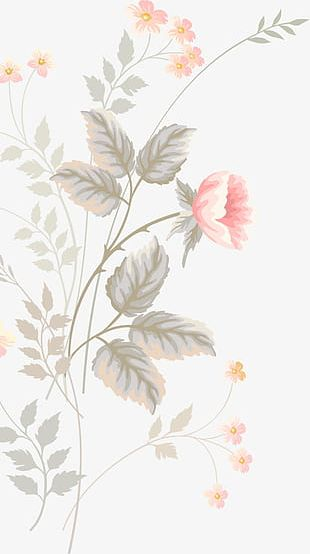 Pink Hand-painted Flowers PNG