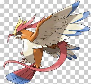 Pokémon GO Ash Ketchum Pokémon X And Y Pokémon Sun And Moon Pidgeot PNG