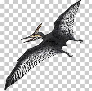 Primal Carnage: Extinction PlayStation 4 Oviraptor Shooter Game PNG