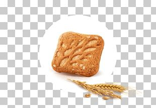 Whole Grain Biscuit PNG