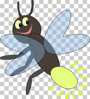 Firefly Light Insect PNG