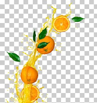Clementine Orange Juice Cocktail Fizzy Drinks PNG