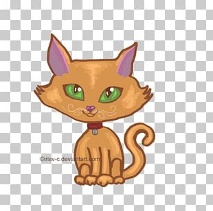 Whiskers Kitten Tabby Cat Canidae PNG