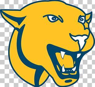 Black Panther Academy Of Saint Elizabeth Carolina Panthers Yellow PNG