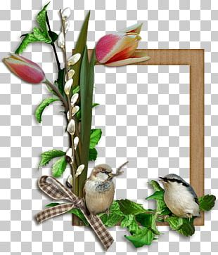 Frames Bird Easter PNG