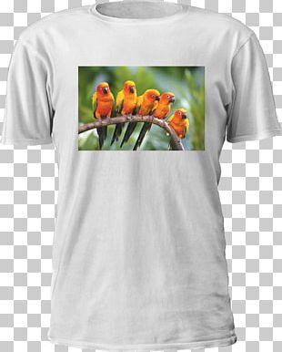 Printed T-shirt Hoodie Dye-sublimation Printer Printing PNG