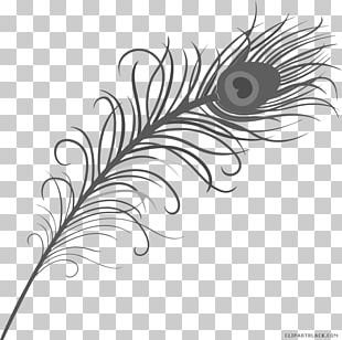 Feather Asiatic Peafowl Tattoo PNG