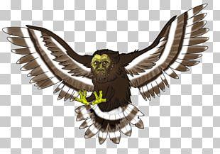 Eagle Owl Fauna Hawk Beak PNG