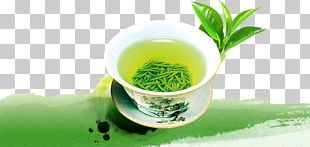 Green Tea Yum Cha Tieguanyin Longjing Tea PNG