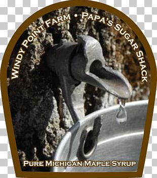 Sugar Maple Maple Syrup Sugar Shack Maple Sugar Pancake PNG