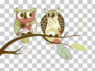 Owl Paper Drawing PNG