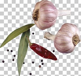 Condiment Spice Garlic Encapsulated PostScript PNG