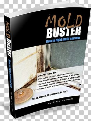 Book Mold Insurance General Contractor Architectural Engineering PNG