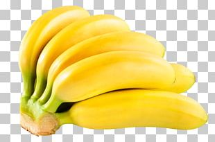 Banana Orito Tropical Fruit Musa × Paradisiaca PNG