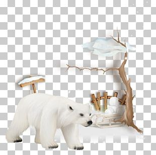 West Highland White Terrier Scottish Terrier Polar Bear PNG