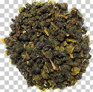 Oolong Nilgiri Tea Tieguanyin Assam Tea Da Hong Pao PNG