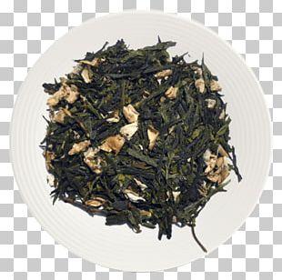 Assam Tea Green Tea Oolong Matcha PNG