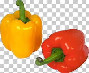 Bell Pepper Chili Pepper Cayenne Pepper PNG