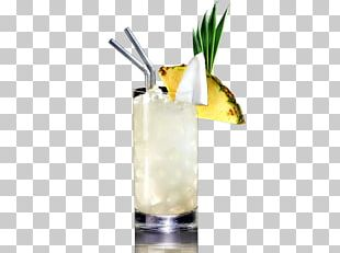 Cocktail Garnish Piña Colada Mai Tai Gin And Tonic Harvey Wallbanger PNG