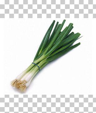 Allium Fistulosum Scallions Asian Cuisine Vegetable PNG