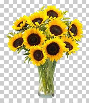 Common Sunflower Flower Bouquet Sunflower Seed PNG