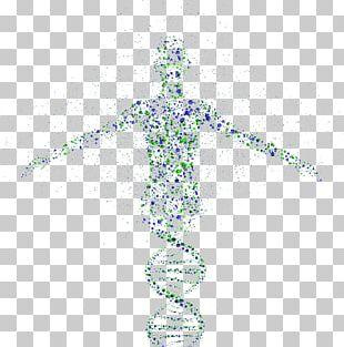 Genetics Genetic Testing Genomics DNA PNG