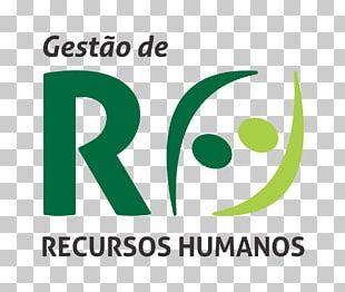 Human Resource Management Administração De Recursos Humanos PNG