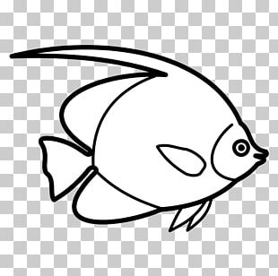 Drawing Deep Sea Fish Line Art PNG