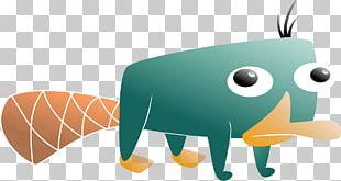 Carnivores Illustration Product Design Fauna PNG