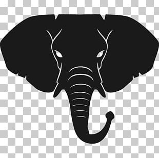 Indian Elephant T-shirt Peter K PNG