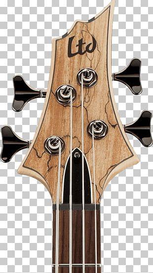 Bass Guitar ESP LTD EC-1000 Acoustic-electric Guitar ESP LTD B205SM Musical Instruments PNG