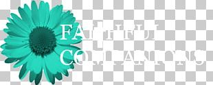 Daisy Family Desktop Turquoise Font Computer PNG