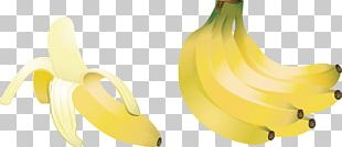 Banana Berry Food Illustration PNG